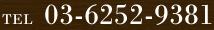 0362529381